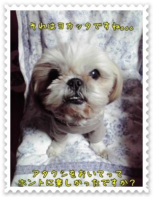 2009_0205_201000AA.jpg
