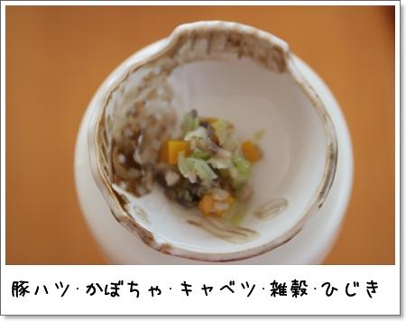 2009_0210_205434AA.jpg