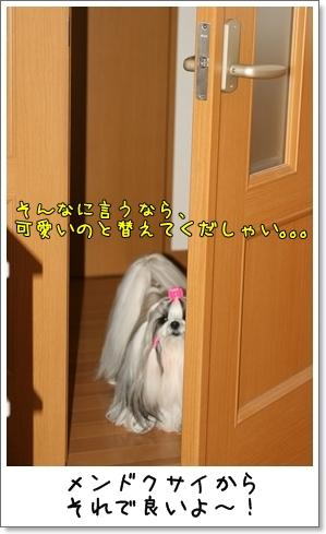 2009_0211_140114AA.jpg