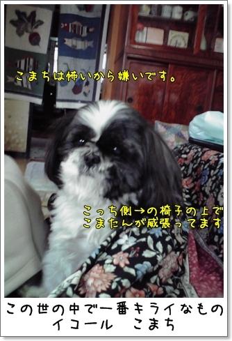 2009_0211_153600AA.jpg
