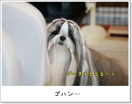 2009_0221_092154AA.jpg
