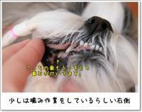 2009_0221_092501AA.jpg