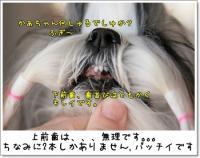 2009_0221_092554AA.jpg