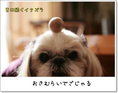 2009_0221_145408AA.jpg