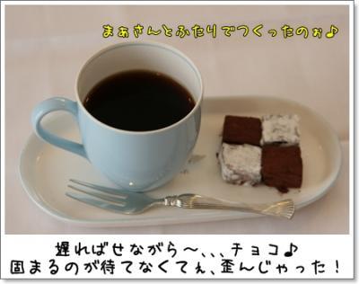 2009_0221_152130AA.jpg