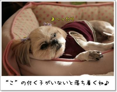 2009_0221_154425AA.jpg