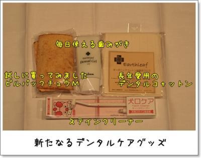 2009_0221_180837AA.jpg