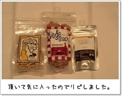 2009_0221_180932AA.jpg