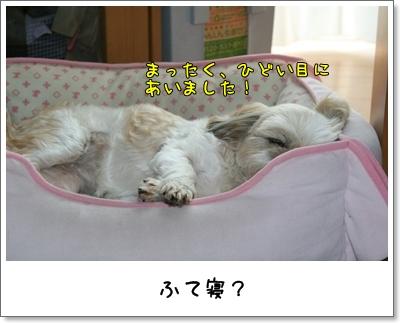 2009_0613_151956AA.jpg