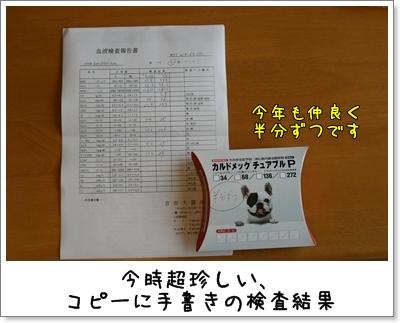 2009_0614_092922AA.jpg