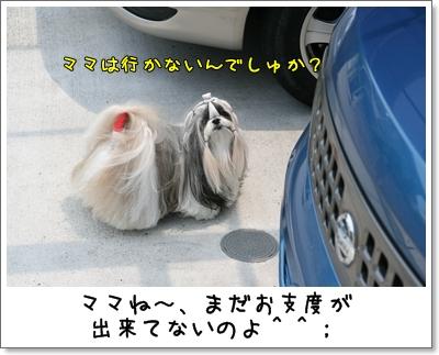 2009_0614_113719AA.jpg