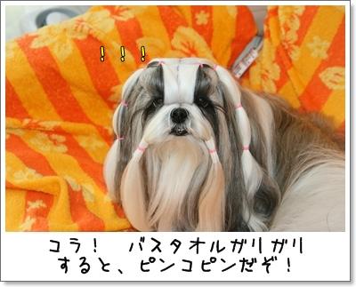 2009_0617_073353AA.jpg