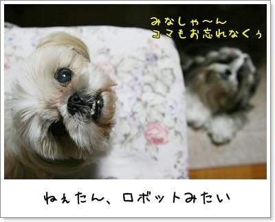 2009_0618_193730AA.jpg