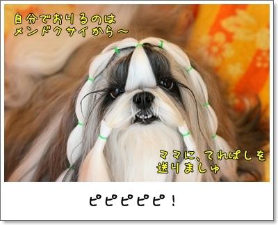 2009_0625_073638AA.jpg