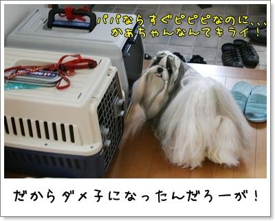 2009_0625_073710AA.jpg