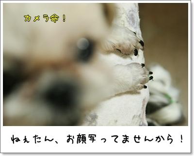 2009_0625_191256AA.jpg