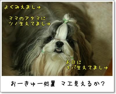 2009_0625_191623AA.jpg