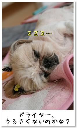 2009_0627_165055AA.jpg