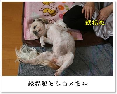 2009_0627_165247AA.jpg
