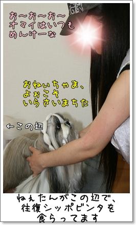 2009_0627_180053AA.jpg