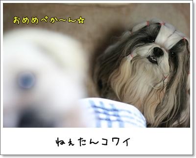 2009_0701_195057AA.jpg