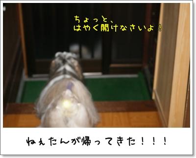 2009_0702_190349AA.jpg