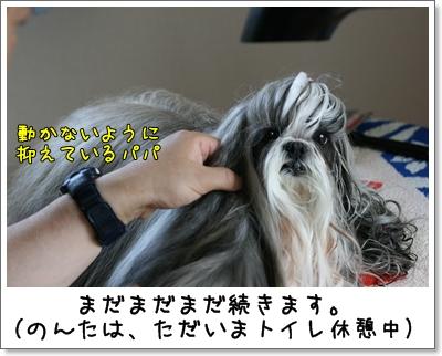 2009_0704_170357AA.jpg