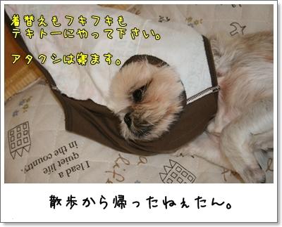 2009_0705_121827AA.jpg