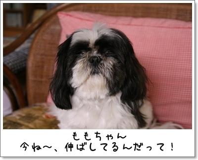 2009_0705_151902AA.jpg