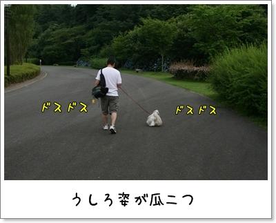 2009_0705_181757AA.jpg