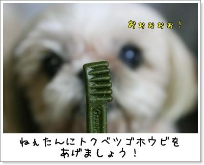 2009_0707_193744AA.jpg