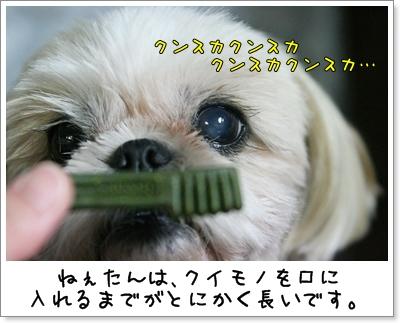 2009_0707_193813AA.jpg