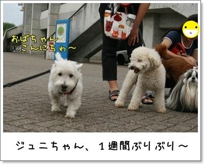 2009_0712_175052AA.jpg