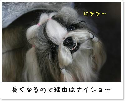 2009_0714_184517AA.jpg
