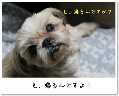 2009_0714_185455AA.jpg