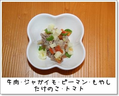 2009_0722_063139AA.jpg