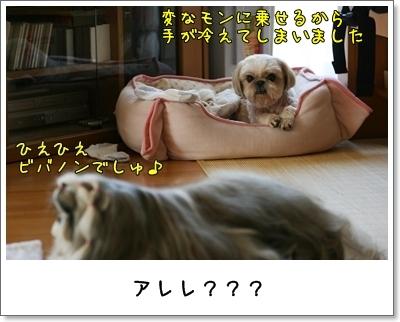 2009_0726_093055AA.jpg