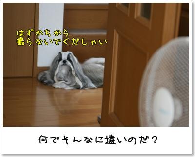 2009_0727_074546AA.jpg