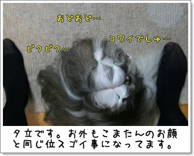 2009_0727_190622AA.jpg