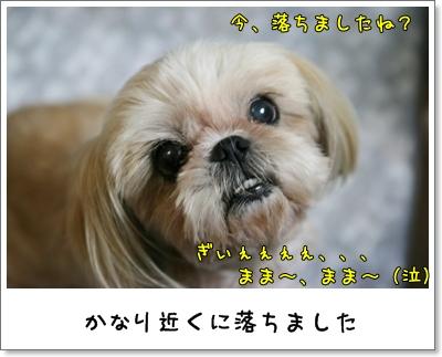 2009_0727_190726AA.jpg