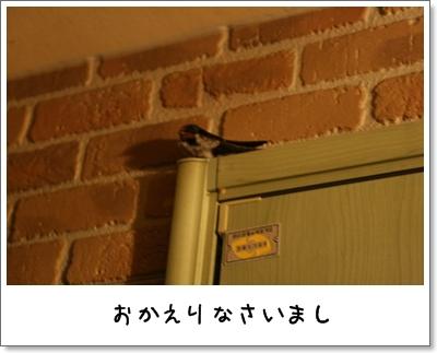 2009_0729_200749AA.jpg