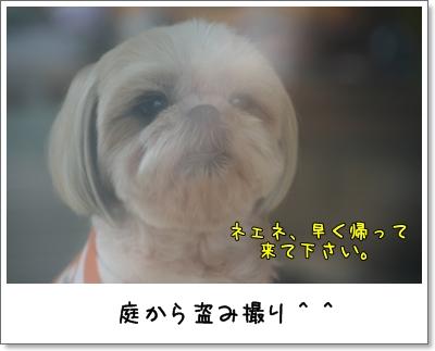 2009_0801_133656AA.jpg