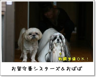 2009_0801_162053AA.jpg