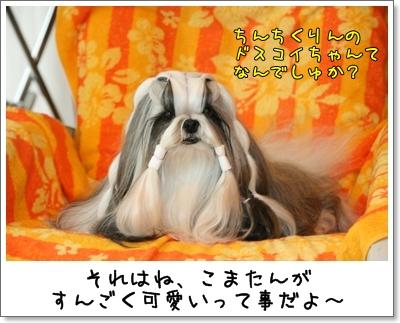 2009_0807_073958AA.jpg