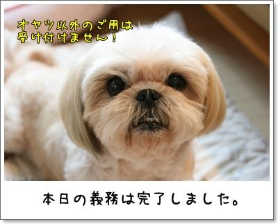 2009_0808_124412AA.jpg