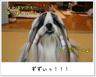 2009_0810_074107AA.jpg