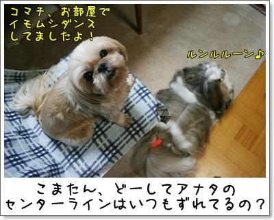 2009_0812_190804AA.jpg