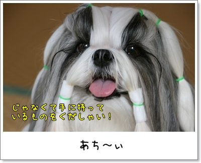 2009_0818_073948AA.jpg