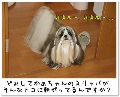 2009_0819_073757AA.jpg