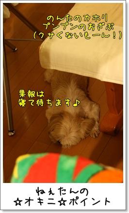 2009_0821_204402AA.jpg